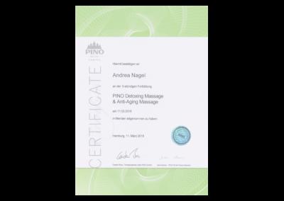 andrea_nagel_pino_certificat-1